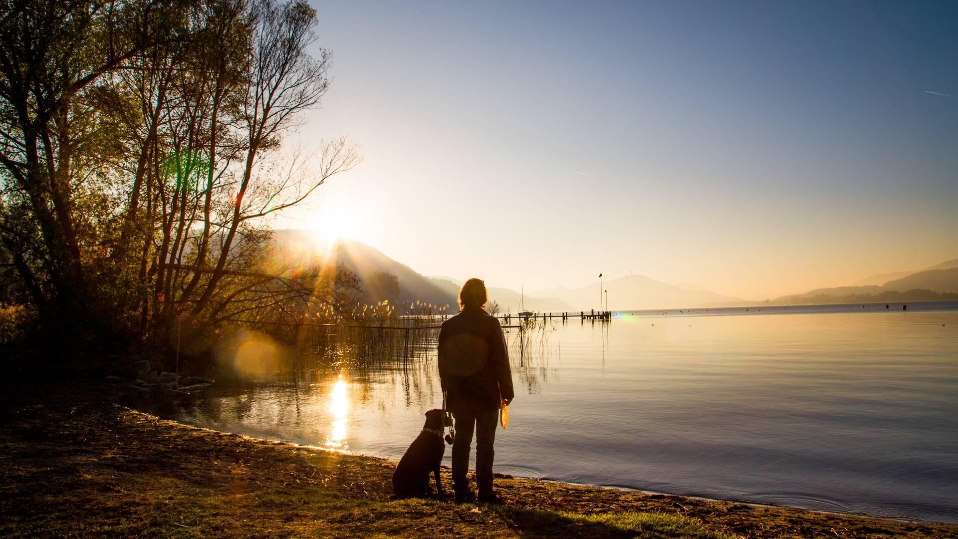 Mit dem Hund am Ufer des Wörthersees