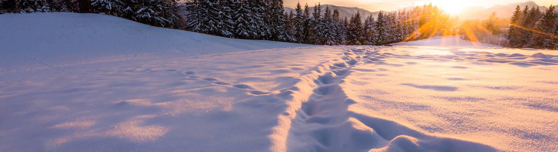 <p>Winterlandschaft bei Sonnenuntergang</p>